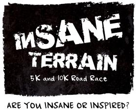 Insane Terrain black box logo FInal