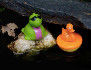 Ducky & Turtle copy